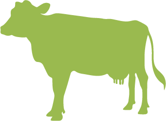 green cow